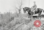 Image of United States Army Cavalry exercises United States USA, 1914, second 34 stock footage video 65675063753