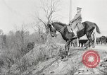 Image of United States Army Cavalry exercises United States USA, 1914, second 35 stock footage video 65675063753
