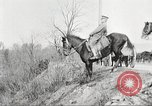 Image of United States Army Cavalry exercises United States USA, 1914, second 36 stock footage video 65675063753