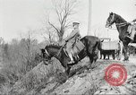Image of United States Army Cavalry exercises United States USA, 1914, second 38 stock footage video 65675063753