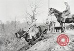 Image of United States Army Cavalry exercises United States USA, 1914, second 40 stock footage video 65675063753