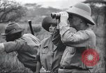 Image of Akeley-Eastman-Pomeroy expedition Kenya Africa, 1927, second 15 stock footage video 65675063758