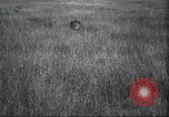 Image of Akeley-Eastman-Pomeroy expedition Kenya Africa, 1927, second 23 stock footage video 65675063758
