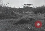 Image of Akeley-Eastman-Pomeroy expedition Kenya Africa, 1927, second 44 stock footage video 65675063758