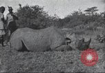 Image of Akeley-Eastman-Pomeroy expedition Kenya Africa, 1927, second 59 stock footage video 65675063758