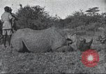 Image of Akeley-Eastman-Pomeroy expedition Kenya Africa, 1927, second 60 stock footage video 65675063758