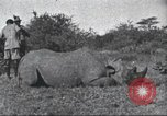 Image of Akeley-Eastman-Pomeroy expedition Kenya Africa, 1927, second 61 stock footage video 65675063758