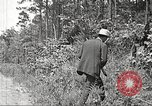 Image of Clyde Barrow and Bonnie Parker Bienville Parish Louisiana USA, 1934, second 20 stock footage video 65675063768