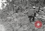 Image of Clyde Barrow and Bonnie Parker Bienville Parish Louisiana USA, 1934, second 21 stock footage video 65675063768