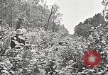 Image of Clyde Barrow and Bonnie Parker Bienville Parish Louisiana USA, 1934, second 40 stock footage video 65675063768