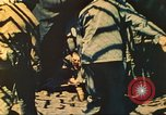 Image of 5th Marine Division Iwo Jima, 1945, second 47 stock footage video 65675063792