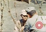 Image of 5th Marine Division Iwo Jima, 1945, second 8 stock footage video 65675063796