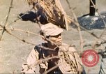 Image of 5th Marine Division Iwo Jima, 1945, second 17 stock footage video 65675063796