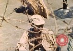 Image of 5th Marine Division Iwo Jima, 1945, second 19 stock footage video 65675063796