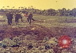 Image of United States Marines Okinawa Red Beach, 1945, second 16 stock footage video 65675063803