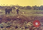 Image of United States Marines Okinawa Red Beach, 1945, second 17 stock footage video 65675063803