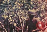 Image of 77th Infantry Division Guam Mariana Islands, 1944, second 13 stock footage video 65675063807