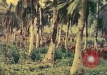 Image of 77th Infantry Division Guam Mariana Islands, 1944, second 9 stock footage video 65675063808