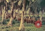 Image of 77th Infantry Division Guam Mariana Islands, 1944, second 10 stock footage video 65675063808