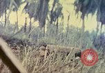 Image of 77th Infantry Division Guam Mariana Islands, 1944, second 36 stock footage video 65675063808