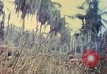Image of 77th Infantry Division Guam Mariana Islands, 1944, second 38 stock footage video 65675063808