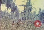 Image of 77th Infantry Division Guam Mariana Islands, 1944, second 39 stock footage video 65675063808
