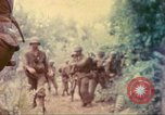 Image of 77th Infantry Division Guam Mariana Islands, 1944, second 43 stock footage video 65675063808