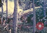 Image of 77th Infantry Division Guam Mariana Islands, 1944, second 7 stock footage video 65675063809