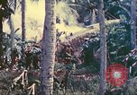 Image of 77th Infantry Division Guam Mariana Islands, 1944, second 10 stock footage video 65675063809