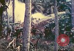 Image of 77th Infantry Division Guam Mariana Islands, 1944, second 13 stock footage video 65675063809