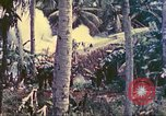 Image of 77th Infantry Division Guam Mariana Islands, 1944, second 14 stock footage video 65675063809