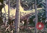 Image of 77th Infantry Division Guam Mariana Islands, 1944, second 15 stock footage video 65675063809