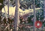Image of 77th Infantry Division Guam Mariana Islands, 1944, second 16 stock footage video 65675063809