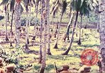 Image of 77th Infantry Division Guam Mariana Islands, 1944, second 35 stock footage video 65675063809