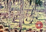 Image of 77th Infantry Division Guam Mariana Islands, 1944, second 37 stock footage video 65675063809