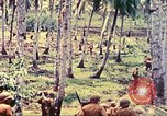 Image of 77th Infantry Division Guam Mariana Islands, 1944, second 41 stock footage video 65675063809