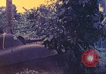 Image of 77th Infantry Division New Britain Papua New Guinea, 1944, second 21 stock footage video 65675063810