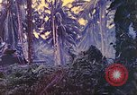 Image of 77th Infantry Division New Britain Papua New Guinea, 1944, second 42 stock footage video 65675063810