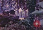 Image of 77th Infantry Division New Britain Papua New Guinea, 1944, second 46 stock footage video 65675063810