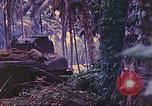 Image of 77th Infantry Division New Britain Papua New Guinea, 1944, second 47 stock footage video 65675063810
