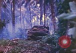 Image of 77th Infantry Division New Britain Papua New Guinea, 1944, second 54 stock footage video 65675063810