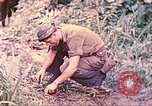 Image of US 5th Marines invading Japanese-held areas of Papua New Guinea Talasea New Britain Papua New Guinea, 1944, second 19 stock footage video 65675063811