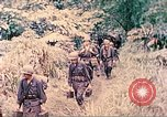 Image of US 5th Marines invading Japanese-held areas of Papua New Guinea Talasea New Britain Papua New Guinea, 1944, second 56 stock footage video 65675063811