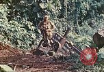 Image of US 5th Marines use winch to pull armored vehicle uphill Talasea New Britain Papua New Guinea, 1944, second 38 stock footage video 65675063814