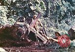 Image of US 5th Marines use winch to pull armored vehicle uphill Talasea New Britain Papua New Guinea, 1944, second 49 stock footage video 65675063814