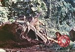 Image of US 5th Marines use winch to pull armored vehicle uphill Talasea New Britain Papua New Guinea, 1944, second 50 stock footage video 65675063814