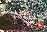 Image of US 5th Marines use winch to pull armored vehicle uphill Talasea New Britain Papua New Guinea, 1944, second 51 stock footage video 65675063814