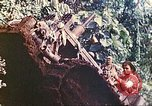 Image of US 5th Marines use winch to pull armored vehicle uphill Talasea New Britain Papua New Guinea, 1944, second 60 stock footage video 65675063814