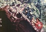Image of US 5th Marines use winch to pull armored vehicle uphill Talasea New Britain Papua New Guinea, 1944, second 61 stock footage video 65675063814