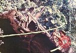 Image of US 5th Marines use winch to pull armored vehicle uphill Talasea New Britain Papua New Guinea, 1944, second 62 stock footage video 65675063814